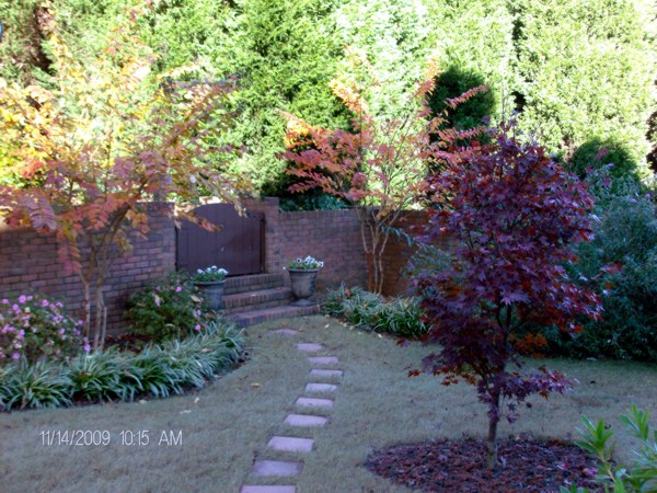 Trees shrubs and plants associated environmental for No maintenance perennials