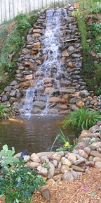 Waterfall in Atlanta backyard